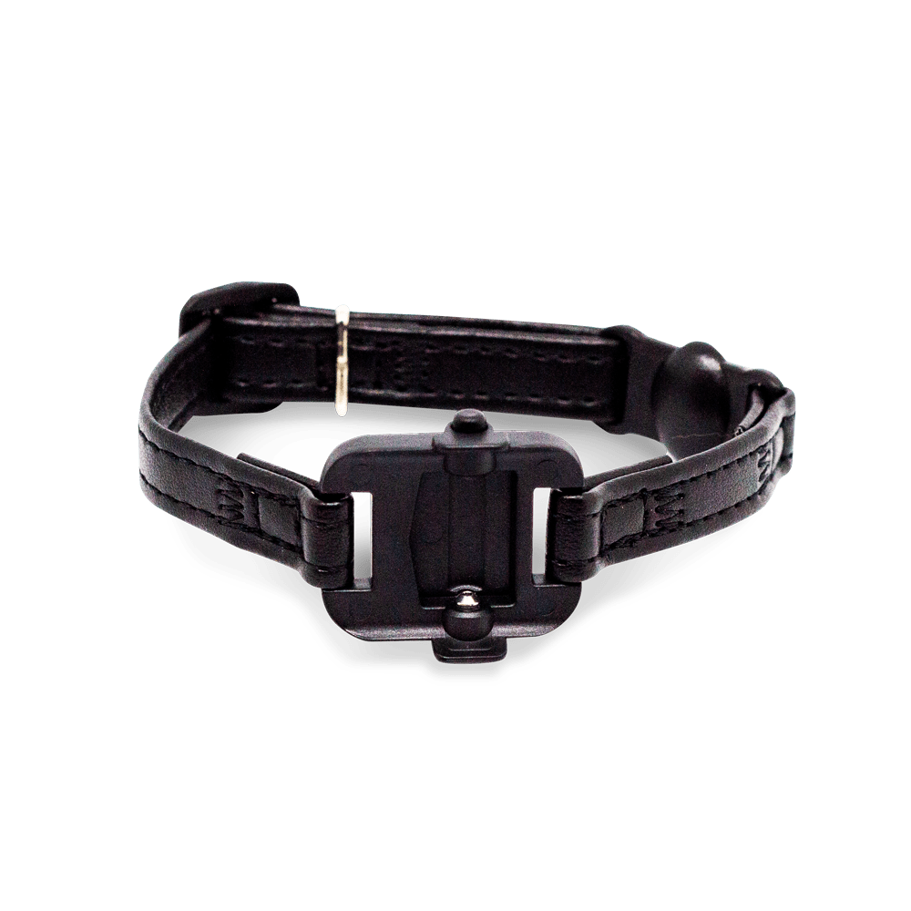 Cat Collar with Tracker Mount
