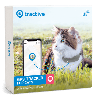 GPS Tracker for Cats